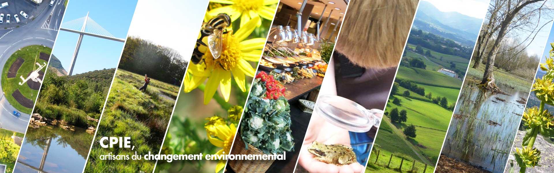 Artisans du changement environnemental
